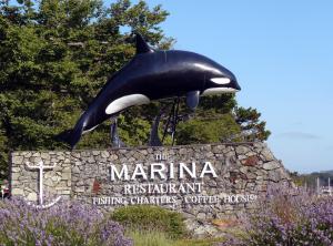 oak_bay_marina_-_Google_Search